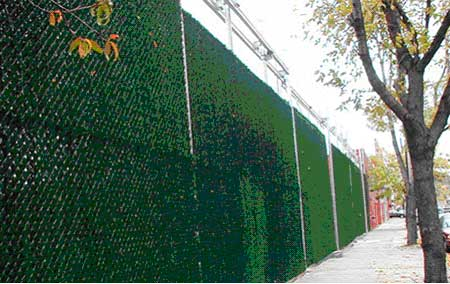 Compare other brands to decorative hedge for Fast growing fence covering plants